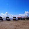 赤ちゃんもおじいちゃんも一緒に楽しめる観光地、水牛車に乗って由布島へ行ってみた