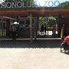 子連れ ハワイ ホノルル動物園で免疫力アップ??