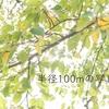 【半径100mの写真展】台風一過の北川尻ーA7R3 x SEL55F18Zー