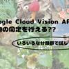 🌱Google Cloud Vision API で生物の同定は可能?