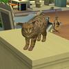 【レガシーチャレンジvol.29】猫生活と二度目のアワード