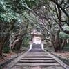 船と原付で行く神津島【5】まっちゃーれセンター・前浜・藤屋ベーカリー