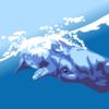 マッコウクジラの排泄物はお宝だった!
