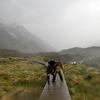 父との旅10日目 ニュージーランド旅🇳🇿 マウントクックのフッカーバレーハイキング!ガイドさん