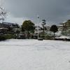 雪が降ると交通情報を気にするようになった