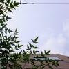作曲工房 朝の天気 2017-09-11(月) 晴れ、しかし下り坂。
