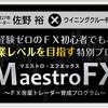 [まとめ]マエストロFX