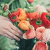 女子力が上がる?!手軽に始められるお花のサブスク