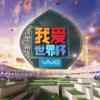 サッカーワールドカップを中国CCTV5で見る。