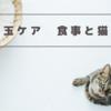 猫の毛玉対策🐱食事と猫草