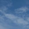 ひばりの初鳴日 生物季節観測と七十二候