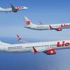 【インドネシアでLCC航空会社が墜落事故】〜改めてLCCは危険なのかそうでないのかを考える〜