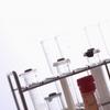 不妊治療最大のブラックボックス - 胚の培養液の不思議