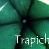 トラピッチェ・エメラルド:Trapiche Emerald