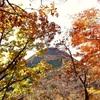 【御荷鉾山】2013年11月3日  マイナーだけどいい山! そして楽ちん!  (日帰り登山)