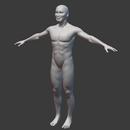 Blender 402日目。「身体のモデリング」その54 ~身体全体の調整~。