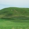 No:111【北海道】丘に巨大な「牛」の文字!!北海道のスケールは君の想像を凌駕するぞ!