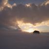 雲上のローラ