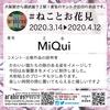#ねことお花見 「MiQui」さん