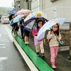 中央っ子、雨の日の日常♪