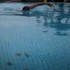寒中水泳可能な屋外プール スパ三日月龍宮城