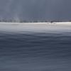 雪原を粉雪が流れています