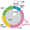 【医学部編入】生命科学講義・細胞の周期と増殖① ~細胞周期概論~