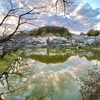 玉縄の谷戸池(神奈川県鎌倉)