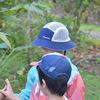 コスタリカ旅行 ピエレーラガーデンの様子 ランチ、森散策、チョコレートづくり体験 子連れコスタリカ旅行