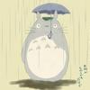 うんざりするほどいつも雨