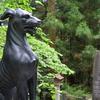 リベンジ三峯神社 ❷