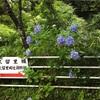 亀山温泉②