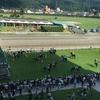 馬も人もツラいよ、炎天下の夏競馬~福島競馬場(福島県福島市)