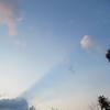 3/29    花が咲き始めた高館山をのんびり歩く①