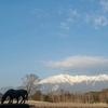 雪景色の御嶽山(御岳山)・2021年3月26日②