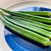 鹿児島のジャンボなオクラが美味しかった7月「湯通堂ジャンボオクラ」