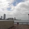 台風19号が去った日曜日に大阪港中央突堤往復ラン
