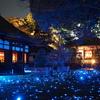 【旅行】京都 紅葉のライトアップ~清水寺・知恩院・青蓮院・永観堂~