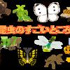 夏休みスペシャル☆「昆虫のすごいところ」