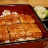 鰻大好きおじさん、イオンのパンガシウスのかば焼きが代替品になるかに食べてみた
