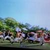 旧岩崎邸庭園 #いだてん の天狗の聖地 花たちの写真だらけ