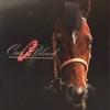2010.【キャロット】2011年1歳募集馬 2010年度産駒
