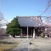 【お寺まるごと美術館PROJECT】妙顕寺で酒井抱一「観世音図」を見てきた(夜桜ライトアップも)