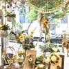 《 本店1F 》 ❁❁ Botanical Sunflower ❁❁