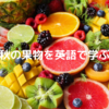 秋の果物の名前を英語で学ぶ! 秋分の日は英語で?果物英語名まとめ あなたはいくつ知っている?