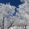 丹沢山塊の霧氷の時期とタイミング、雪景色の写真スポットの詳細!
