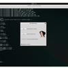 KaliLinuxでIDA-Demoを使う