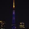 ほぼライブ - ダイヤモンドヴェール 【青・白】 (東京タワー SAMURAI BLUE ライトアップ)