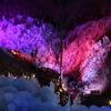 山の傾斜を利用して作られる美しい氷柱 秩父市「あしがくぼの氷柱」