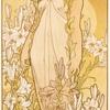 Virgo and lily flower    乙女座とユリの花